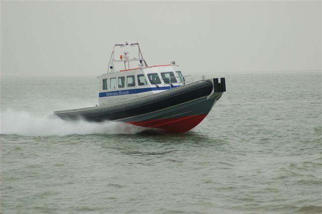 Kopie (2) van northern diver 27-12-06 (3)